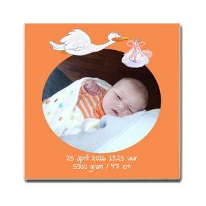 geboortetegel ooievaar oranje