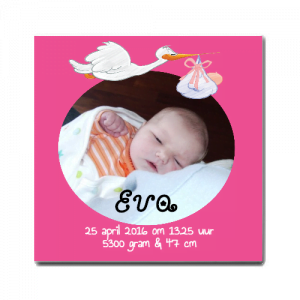 Geboortetegel Ooievaar roze